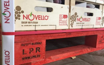 Novello chooses LPR – La Palette Rouge
